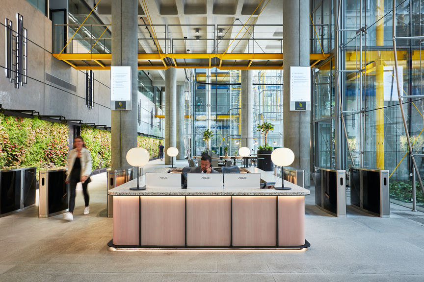 The Importance of Biophilic Design and How to Ensure Longevity