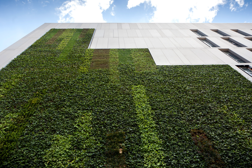 How and Where to Design a Living Wall to Meet Fire Regulations
