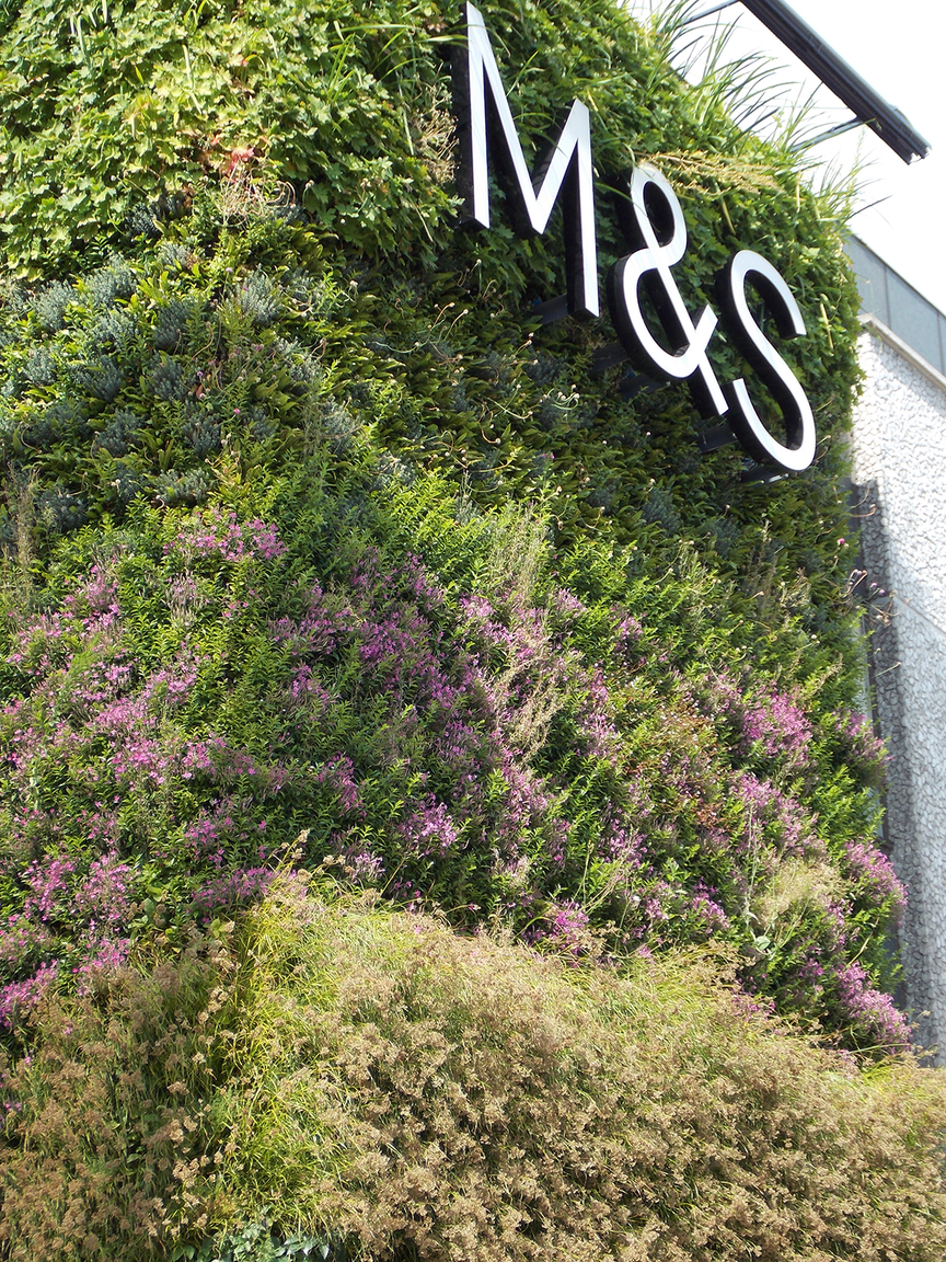 living wall at M&S newcastle