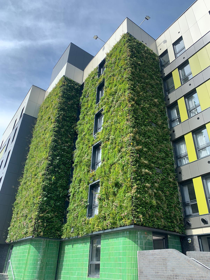 Fire and Living Walls: What's possible?