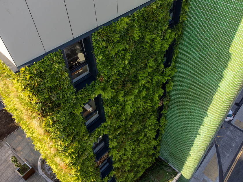 Living Wall & Green Roof Design