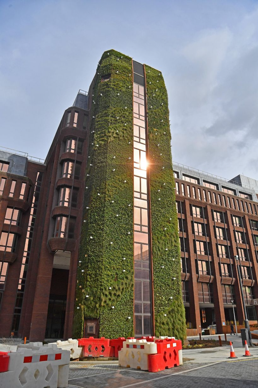 Living Wall & Green Roof Design